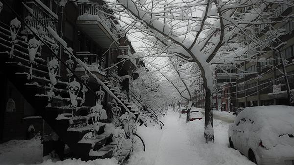 8233.Winter2014.jpg
