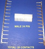 24pin with pins.jpg