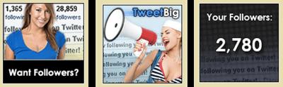 tweet pic.png
