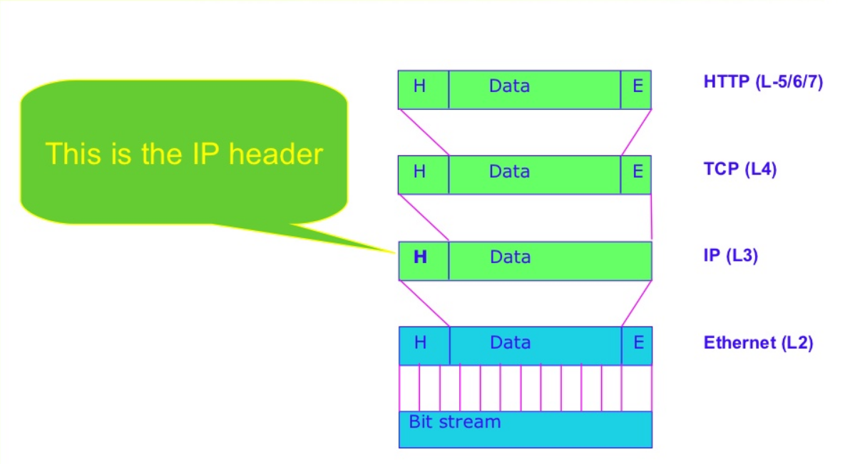 IP数据报格式.PNG.png
